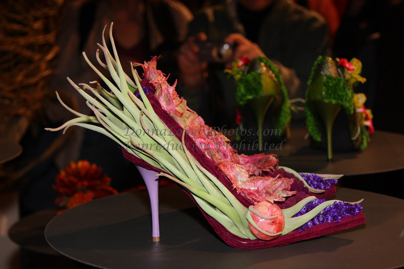 Philadelphia Flower Show Shoe, 2009