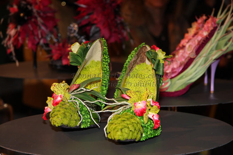 Philadelphia Flower Show Shoes 2009