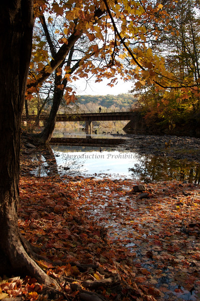 Fall at Prallsville Mill, Stockton, NJ