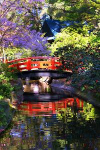 Japanese Gardens Bridge Spring Descanso Gardens