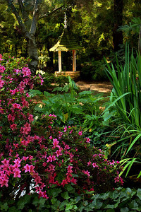 Descanso Gardens  La Canada / Flintridge CA