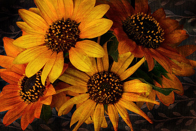 Antiqued Sunflowers #1