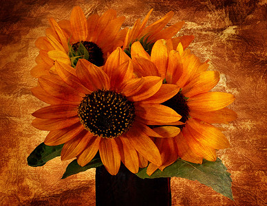 Antiqued Sunflowers #2