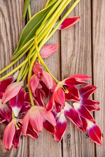 Petals_website