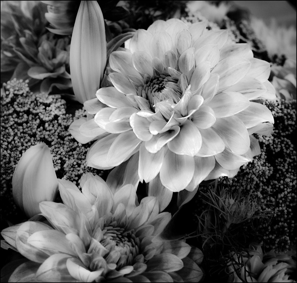 Black & White Chrysanthemum Boquet