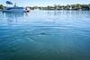 20200312-Crystal_River_Kayaking-017