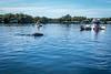 20200312-Crystal_River_Kayaking-019