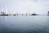 20200205-sailing-001