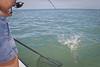 100129_fishing_0048