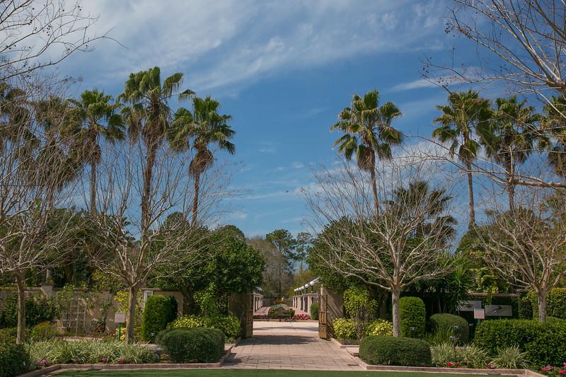 Florida-13.jpg