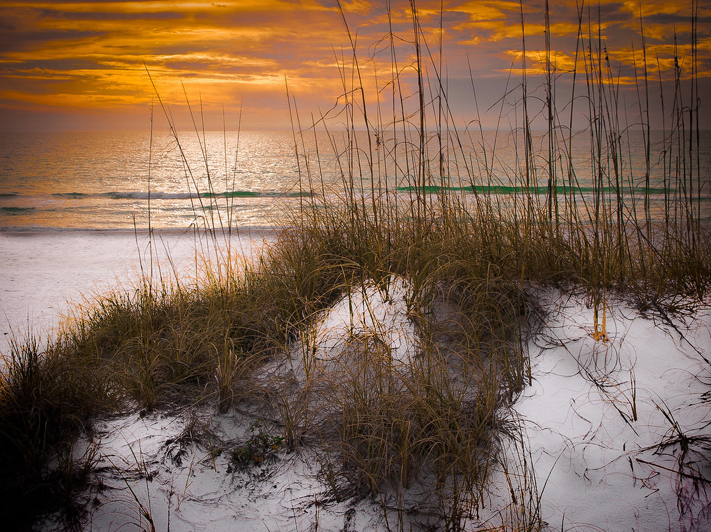 <center><h2>' Morning Dune '</h2> St Augustine Beach, Fkirdia  Matted 16 x 20 on Luster Photo paper (12 mil) </center>