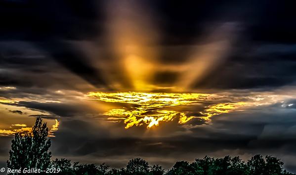 Lani Sunset - Ocala F{