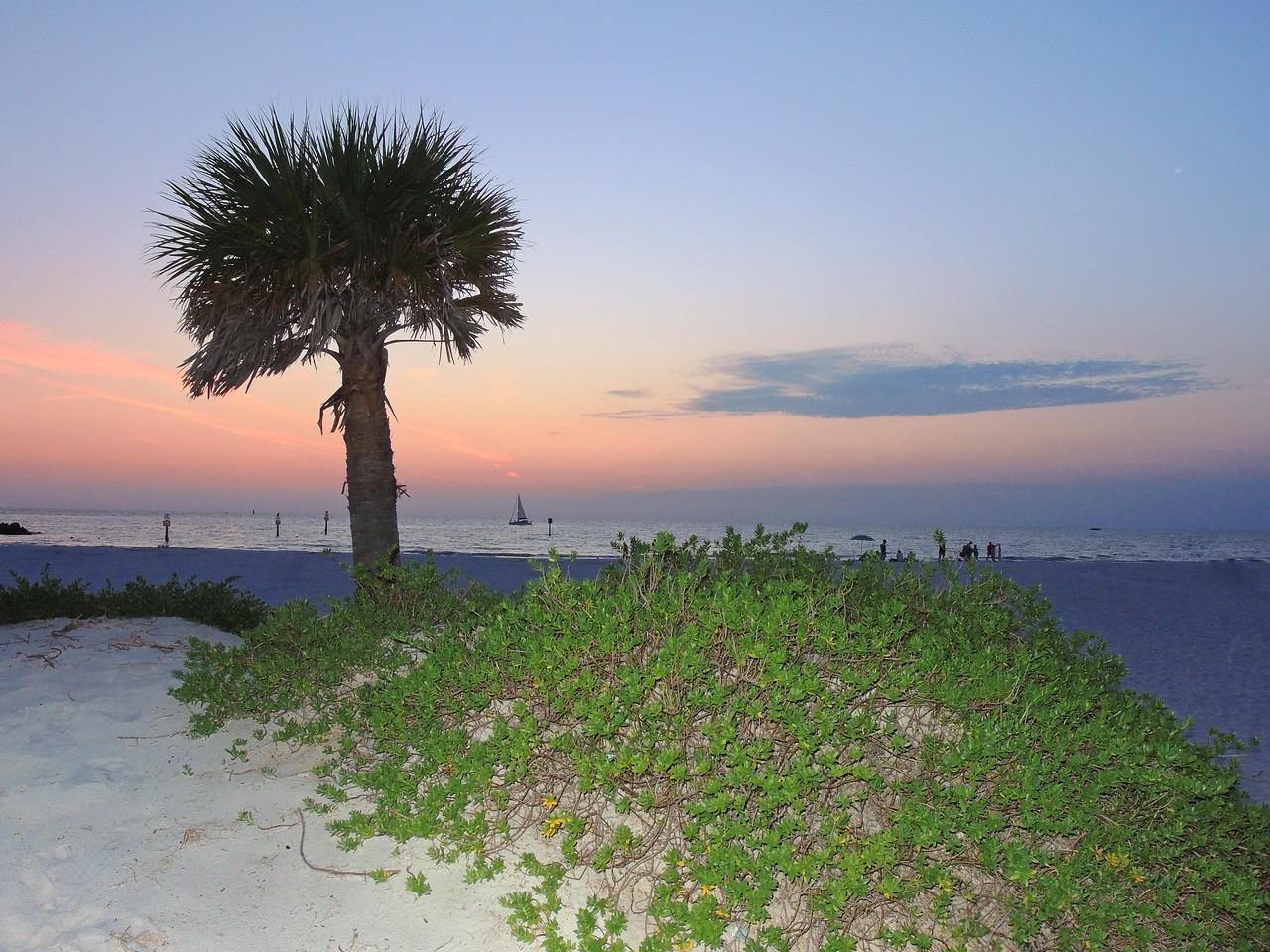 Beach sunset
