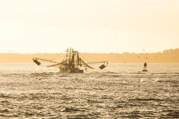 Shrimp Boat at Dawn