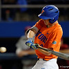 University of Florida Gators Baseball South Carolina Gamecocks 2017