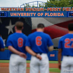 The Gators during the national anthem as the University of Florida Gators host the Wake Forest Demon Deacons during Game 3 of the 2017 NCAA Super Regionals at McKethan Stadium.  June 12th, 2017. Gator Country photo by David Bowie.