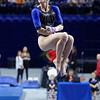 University of Florida Gators Gymnastics 2017