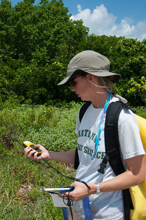 A Biscayne National Park biologist records a GPS location of a turtle nest on Elliot Key.