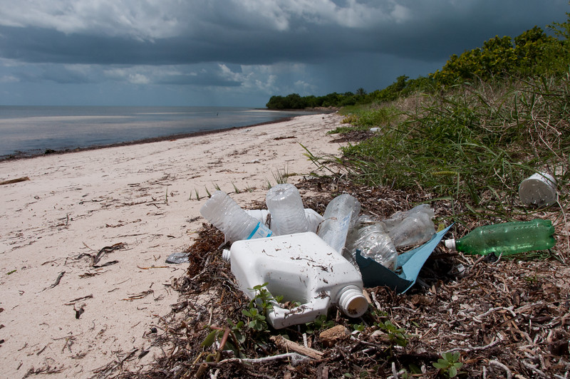 Plastic bottles are a very common type of marine debris.  Reducing consumption of single use plastics is a great way help the oceans.