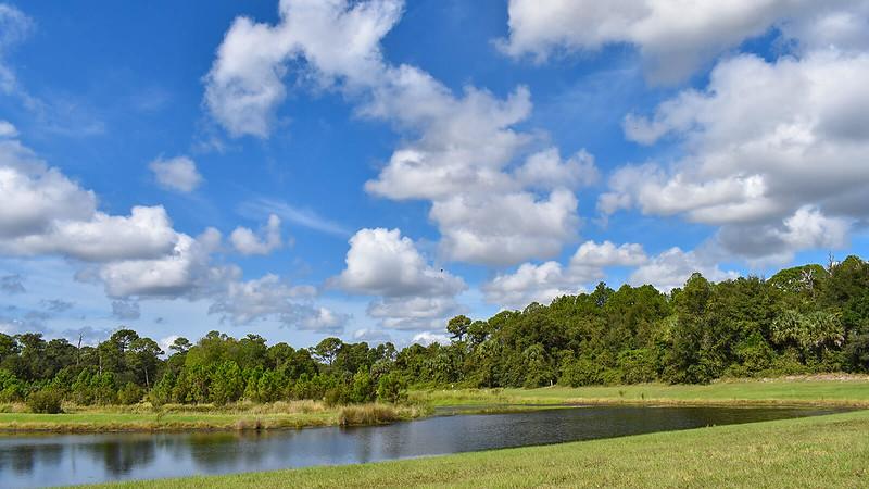 Stormwater pond at Audubon Park