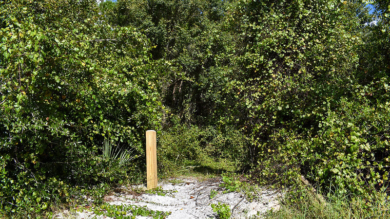 Post marking start of trail