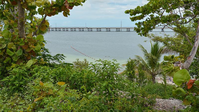 View of US 1 bridge beyond shallows