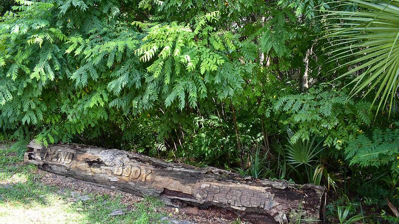 Log with wods Mind Body Spirit