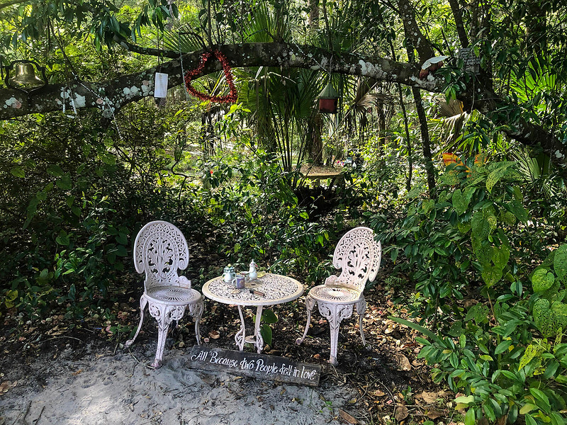 Two white iron chairs and table with teapot under trees