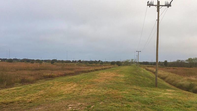 Grassy berm next to wetlands under gray skies