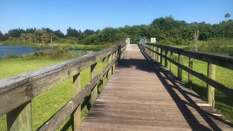 Wooden walk and bridge