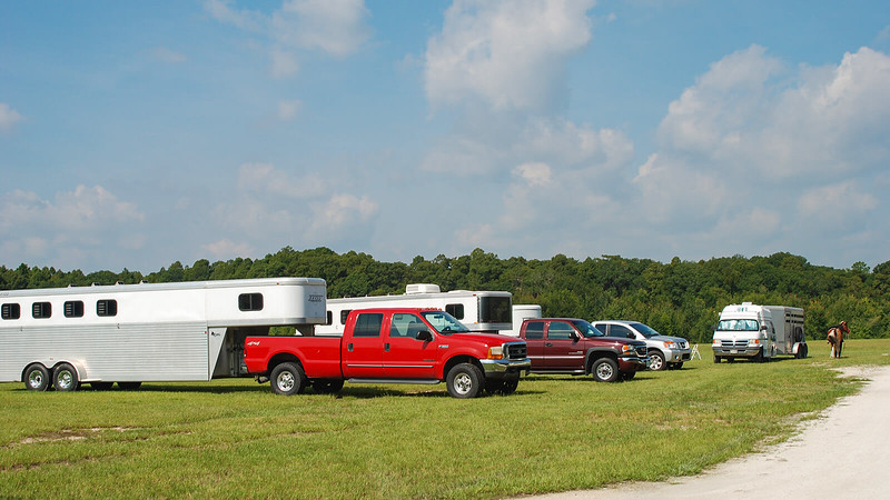 Horse trailers and pickup trucks