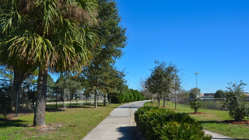 Bike path through park