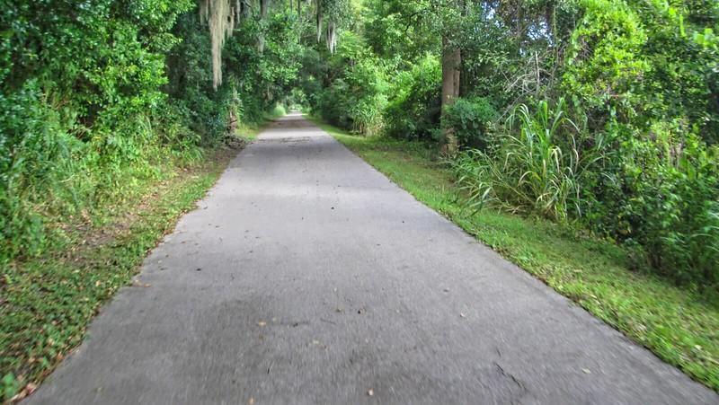 Canopied corridor above bike path