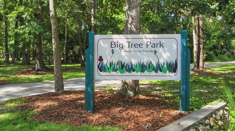 Big Tree Park sign