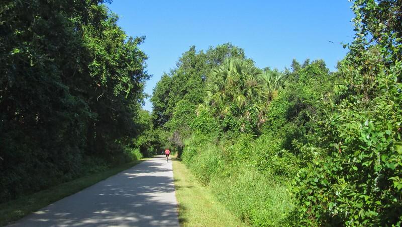 Jogger on bike path