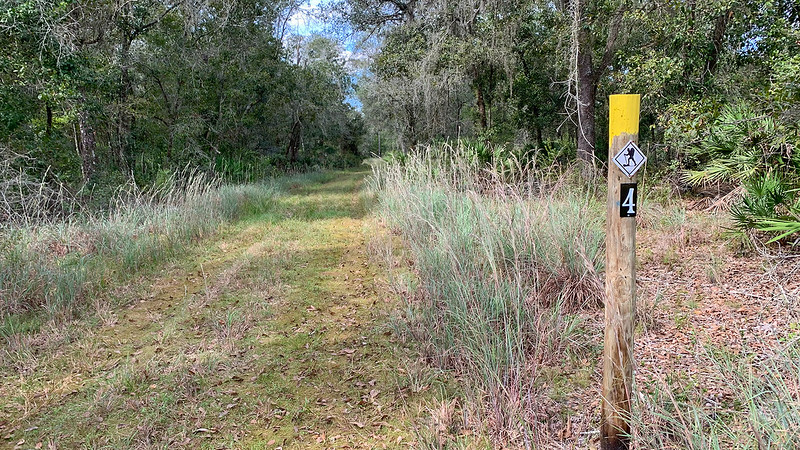 Yellow marker on post along trail