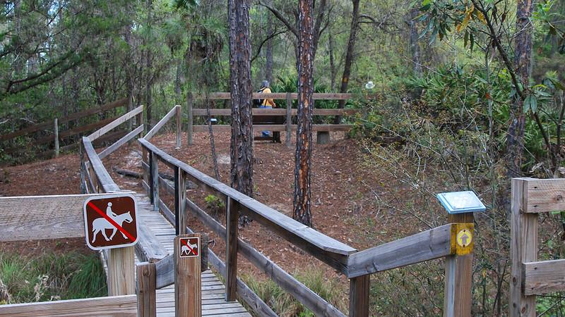 Elaborate bridge and boardwalk