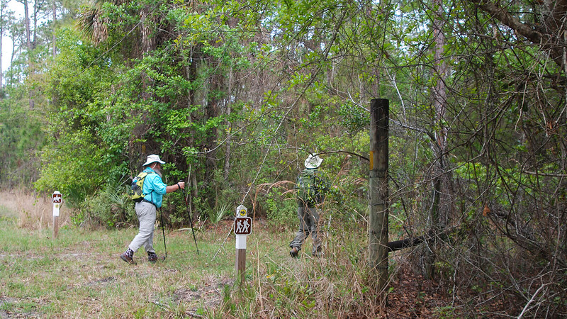 Two male hikers enter woods at sign