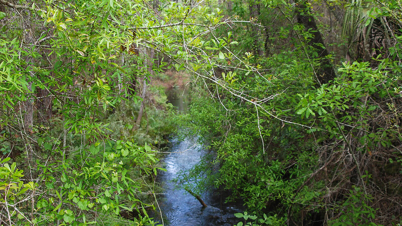Deep Creek in deep ditch