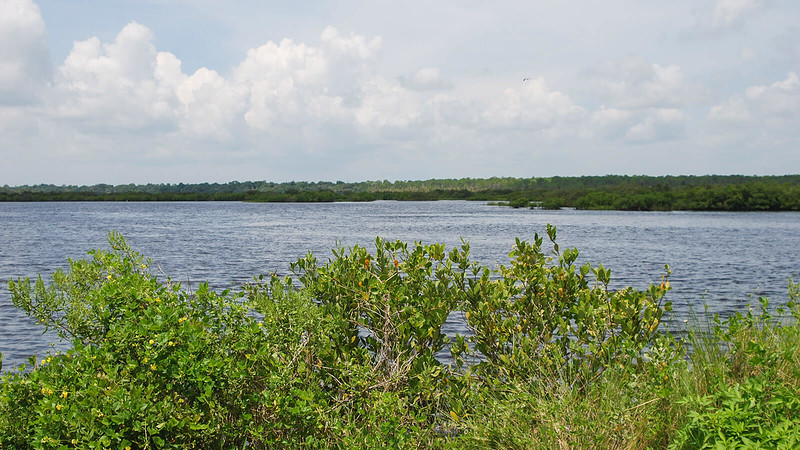 Broad waterway