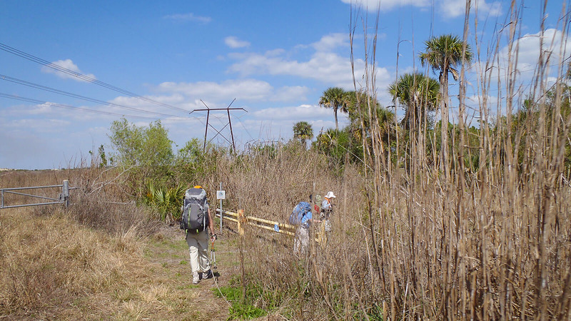 Hikers under power line at gate