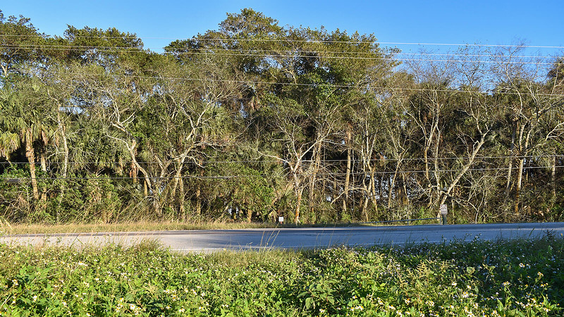 US 441 crossing