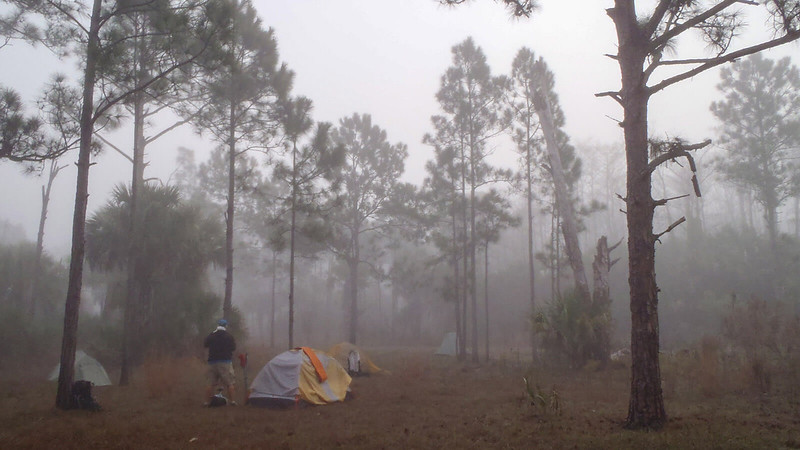 Tents in fog