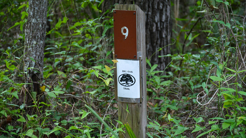 Marker with a 9 and Florida State Parks logo