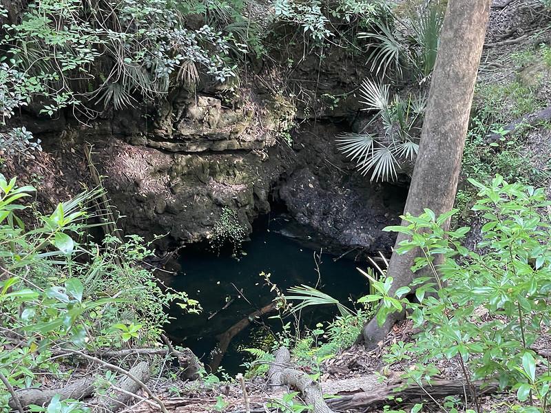 Dark water in sinkhole