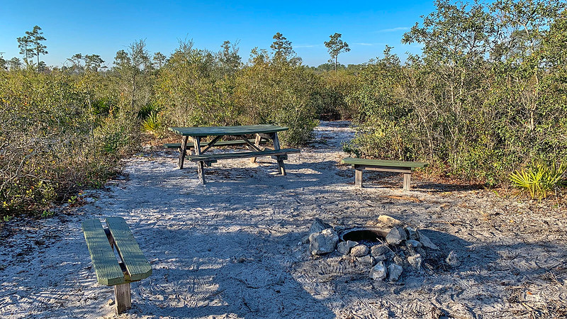 Picnic tables and benches and fire pit in scrub habitat
