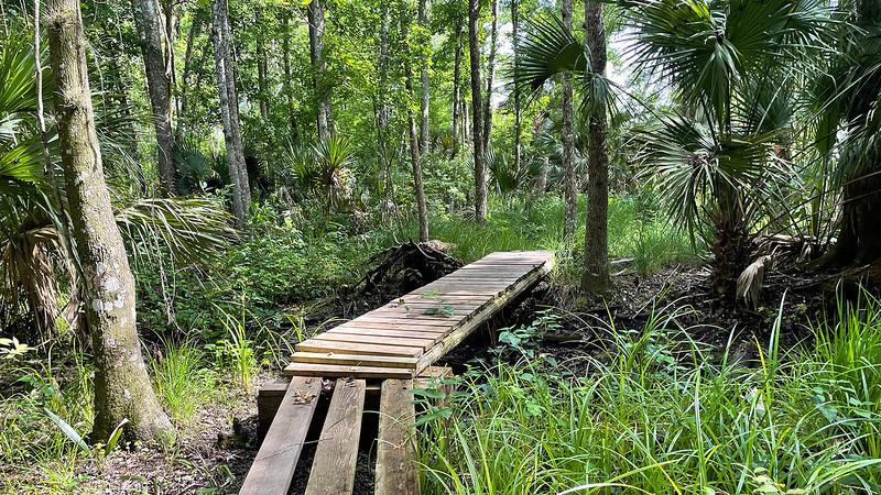 Promenade en hamac de palmier