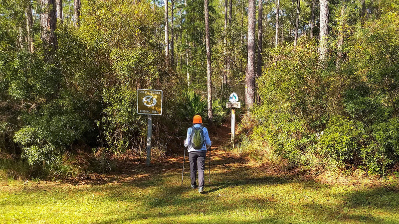 Hiker walking into woods past trail signs