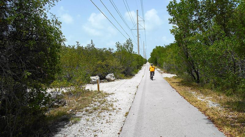 Cyclist riding beneath power line