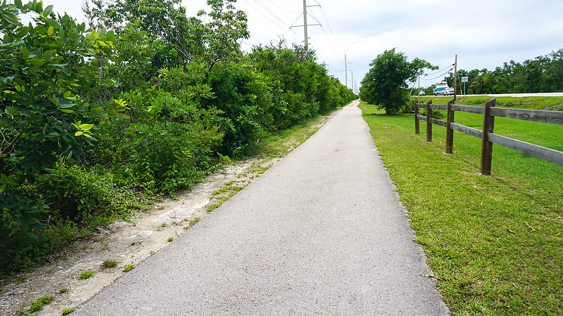 Bike path within view of highway and power lines